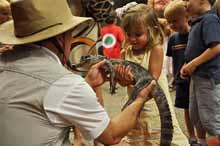 live animal school shows