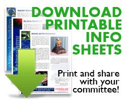download school show info sheets