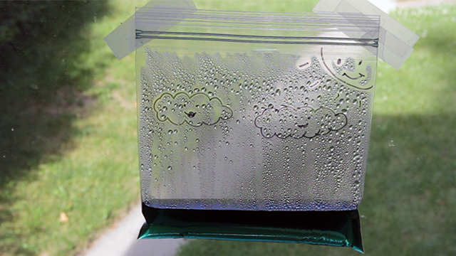 Hang your water cycle in a bag on a bright window and observe the results!