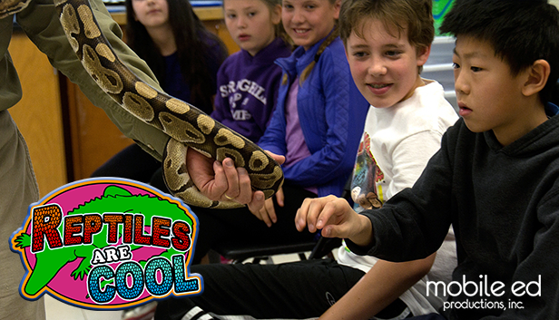 Mobile Ed's Reptiles are Cool!